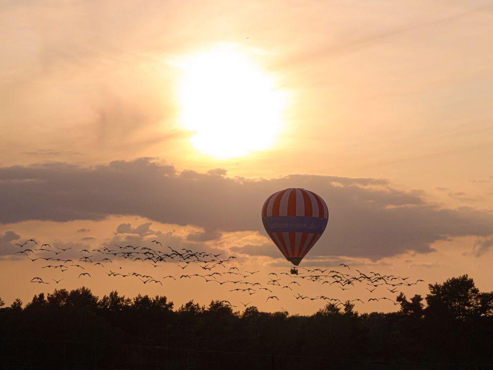 Balonimpressionen im Herbst